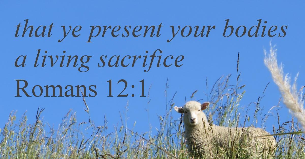 sacrifice1_1200x628